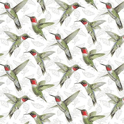 Poppy Meadow Hummingbirds on White