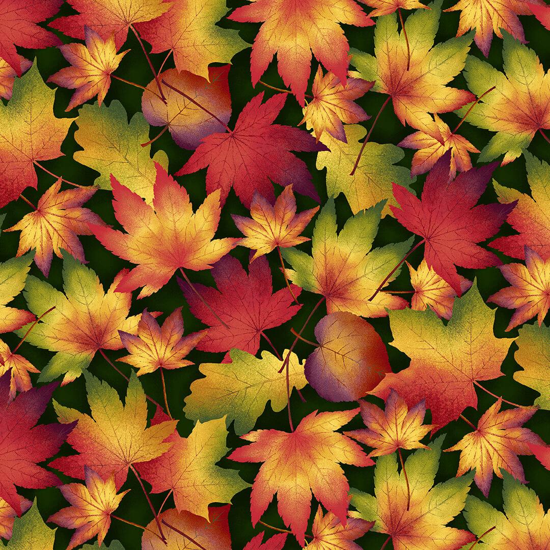 Autumn Time 2321 66