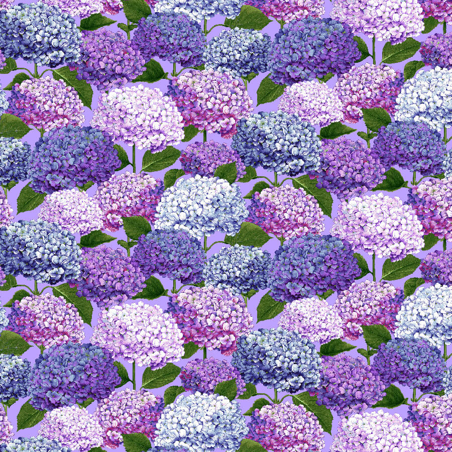 SPECIALTY FABRICS:  Packed Hydrangea Blooms on Purple:  Dragonfly Garden by Color Principle for Henry Glass & Co.