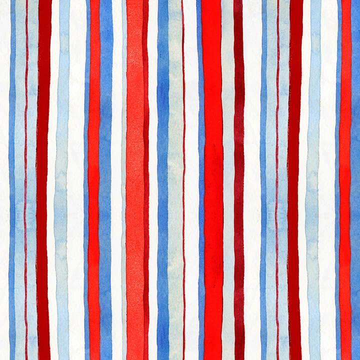 Star Spangled Multi Stripe 9029-87