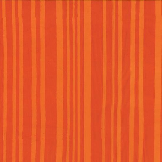 stripe in tiger