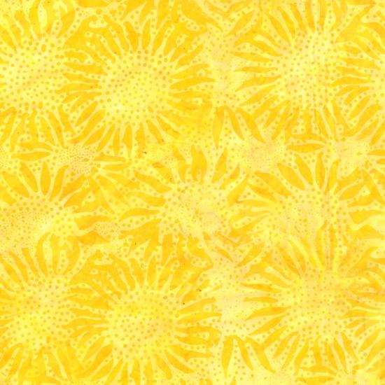 884-149 Sun