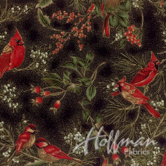 Black-Gold Cardinal Carols