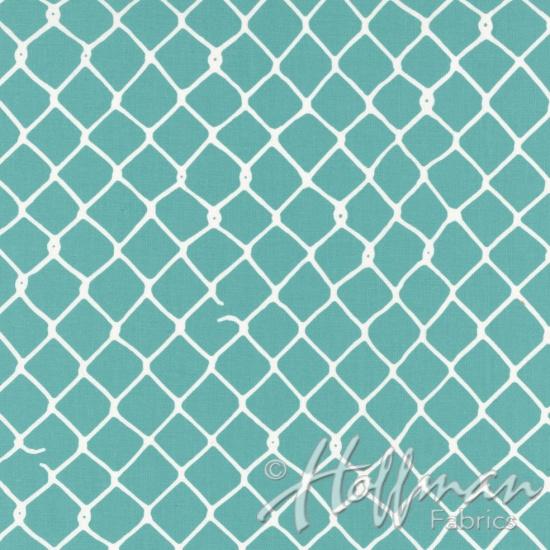 Grafic - Aqua