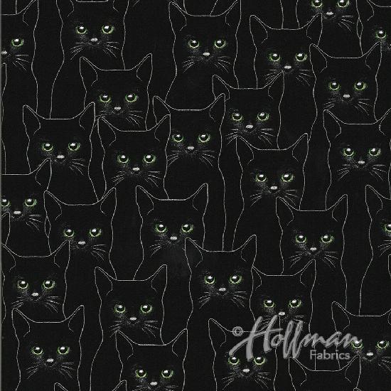 Hoffman Full Moon P4347-213S Onyx Silver Metallic Cats