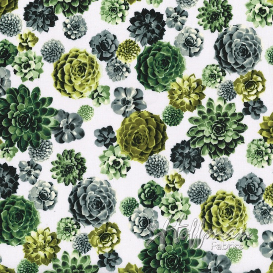 Chartreuse and Green Succulents on White:  Agave by Hoffman
