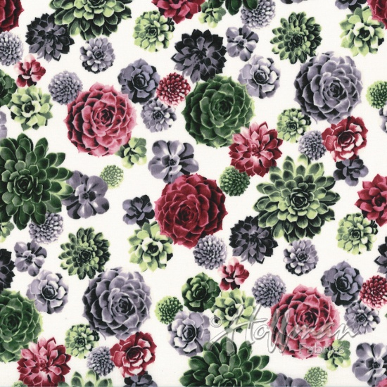 P7569-562-Blooms