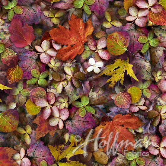 September Leaf Me Be