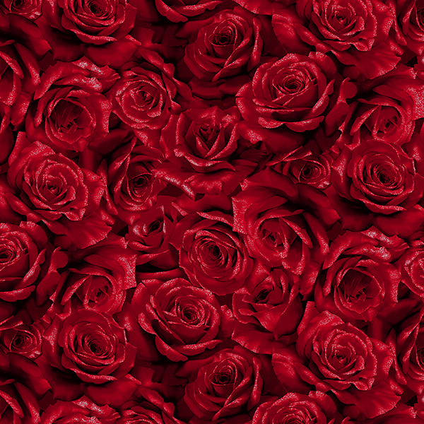 Cardinal Carols Crimson/Silver - Q7630-10S
