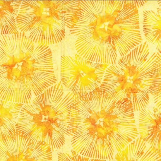 R2282-149-Sun Summertime Sweetness