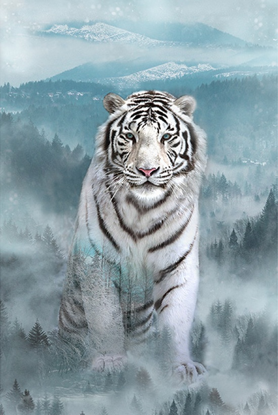 Hoffman Call of the Wild 28 Tiger Panel  Ice Blue