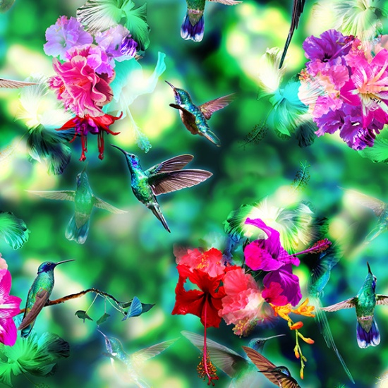 R4583-295-Hummingbird Hummingbird Haven