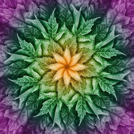 Dream Big -- R4617H-324 Leaf Dragonfly