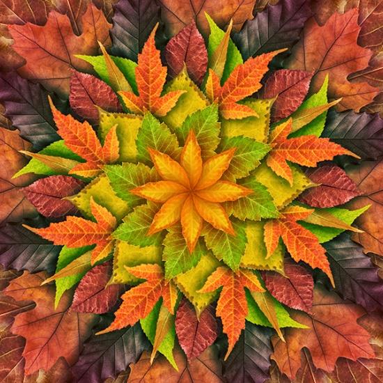 Dream Big Leaf Autumn Panel 43
