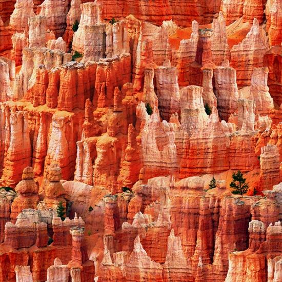 Nature's Narrative - Desert Destination Canyon 646
