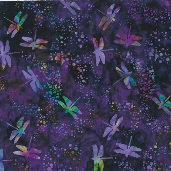 S2298-585-Galaxy Meadow Melody