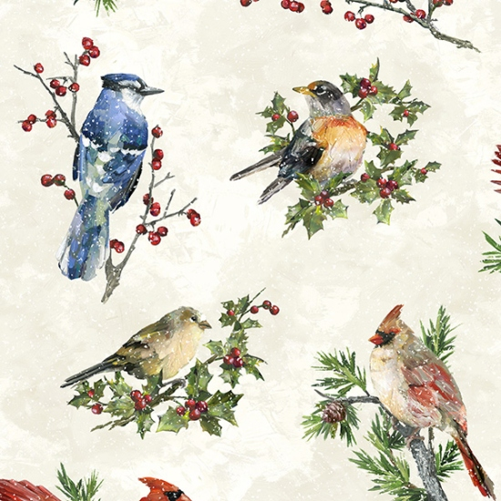 Winter Wonder Papyrus Winter Birds