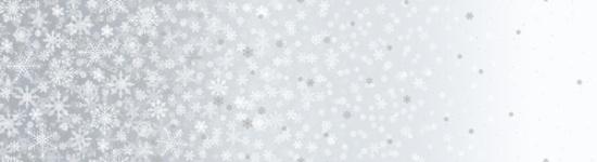 First Snowfall Silver Snowflakes Metallic
