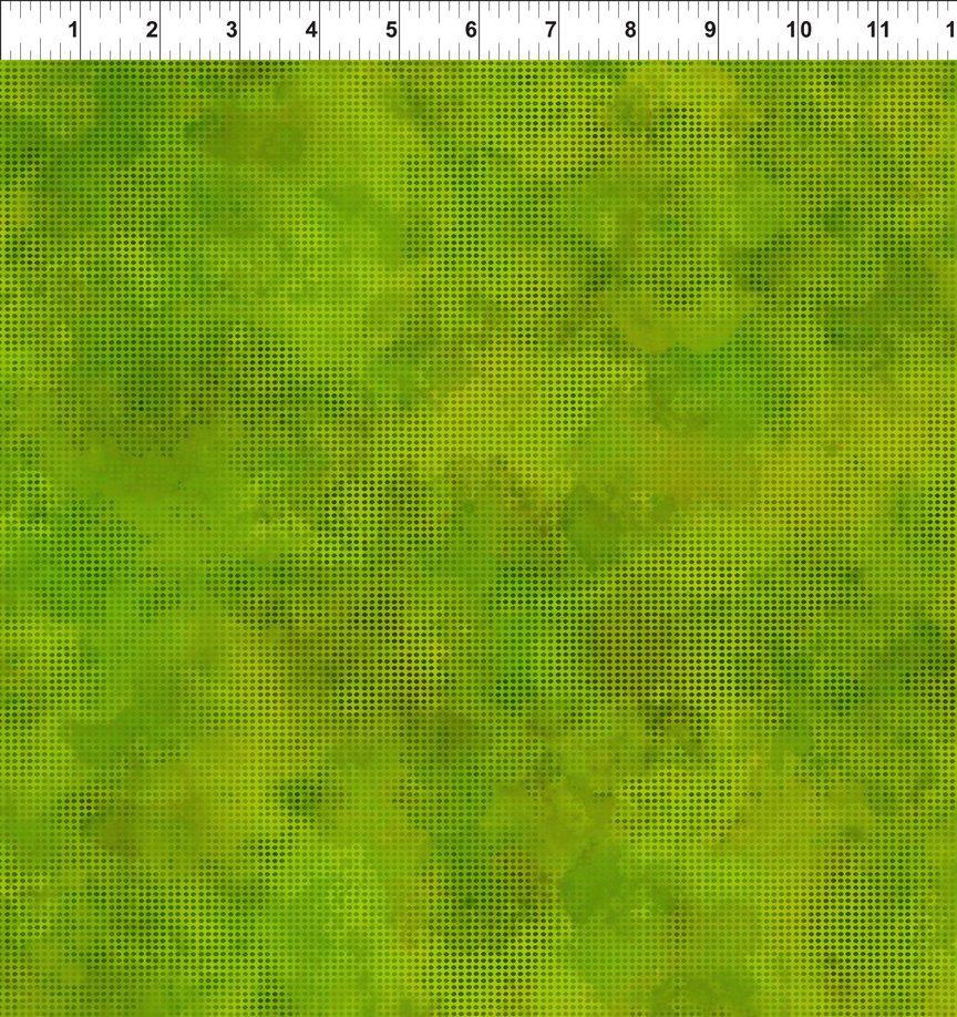 Dit Dot Evolution 1DDE 21