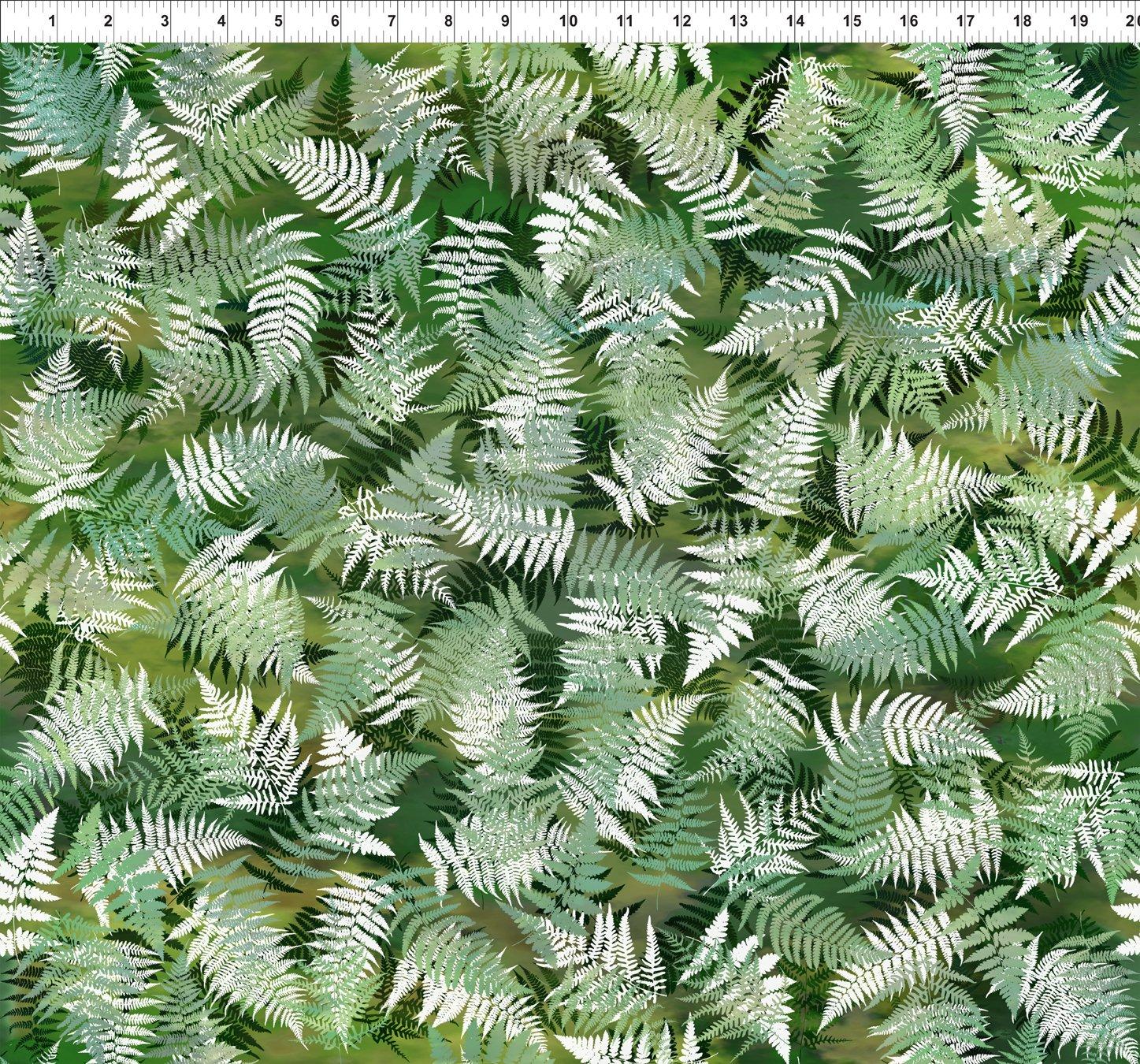Terrarium - Ferns<br>5TER 1
