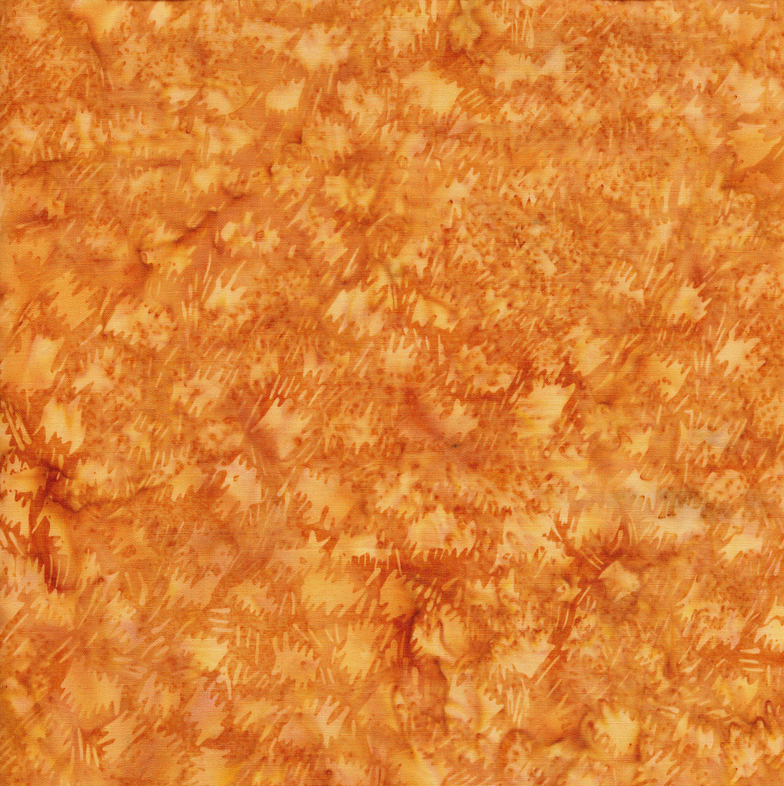 Batik-Cheetah-Blonde Ale-048