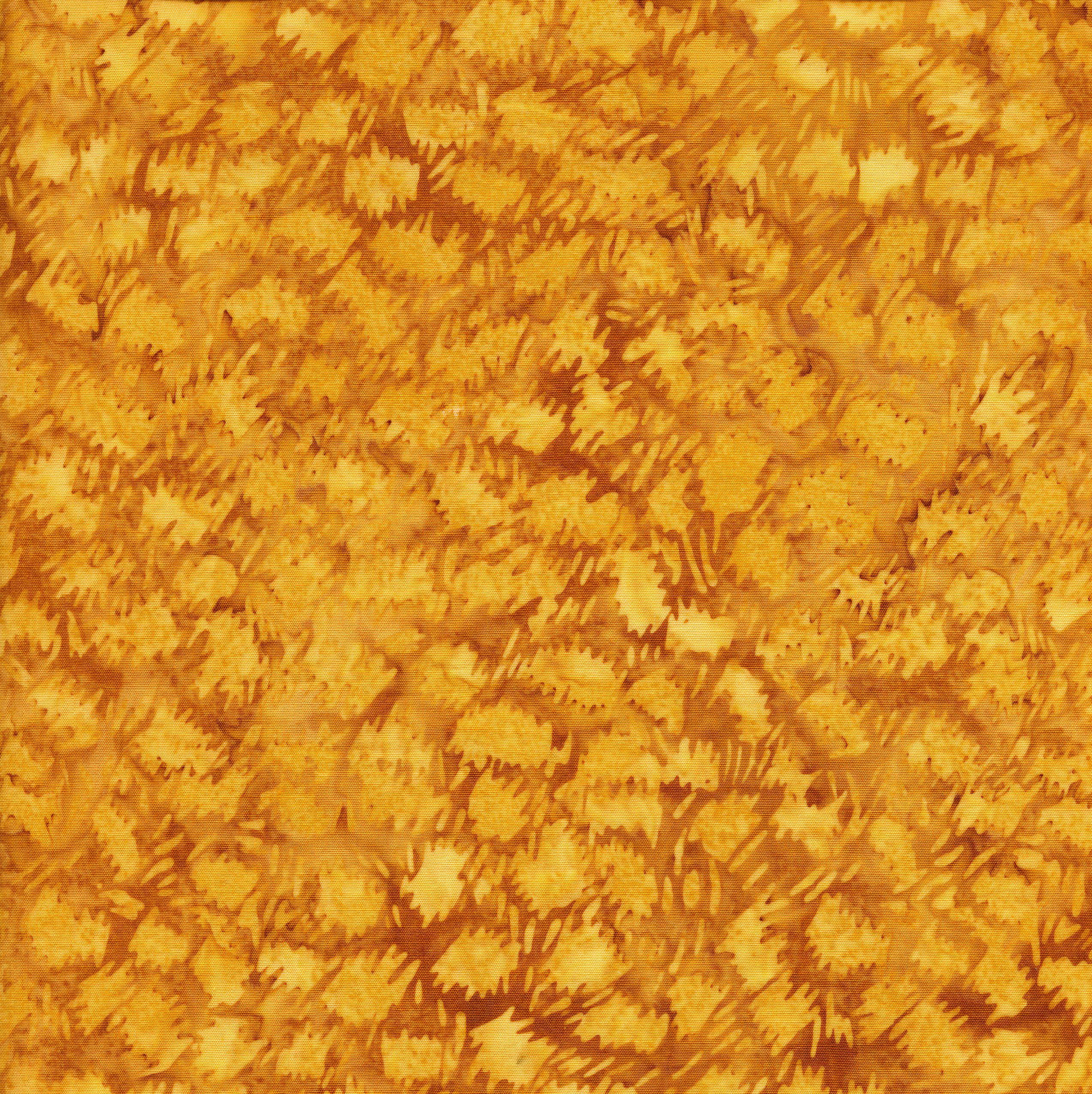 111803150 / Cheetah-Cheddar