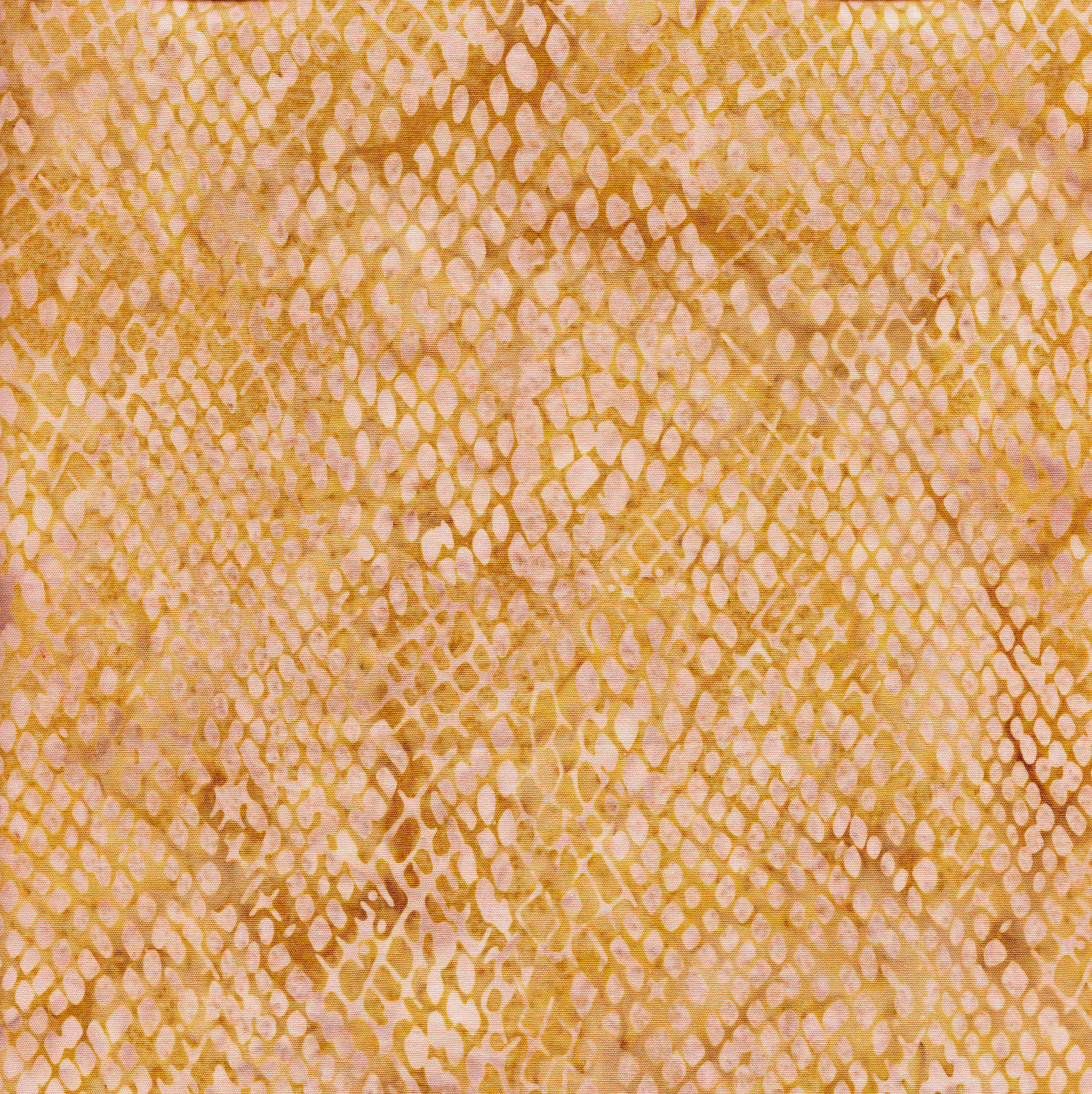 111805038 / Snake Skin -Hay