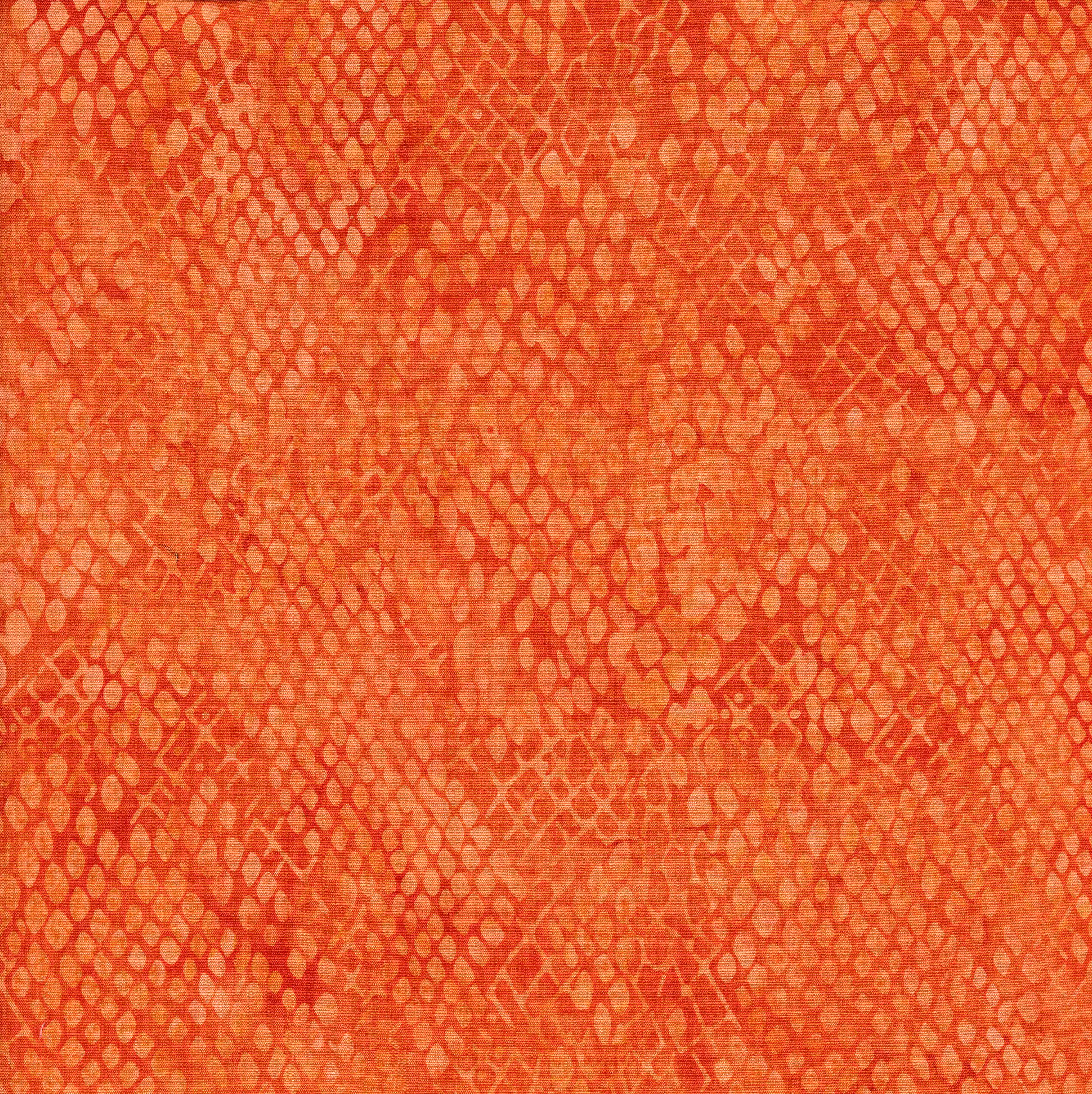111805210 / Snake Skin -Pumpkin