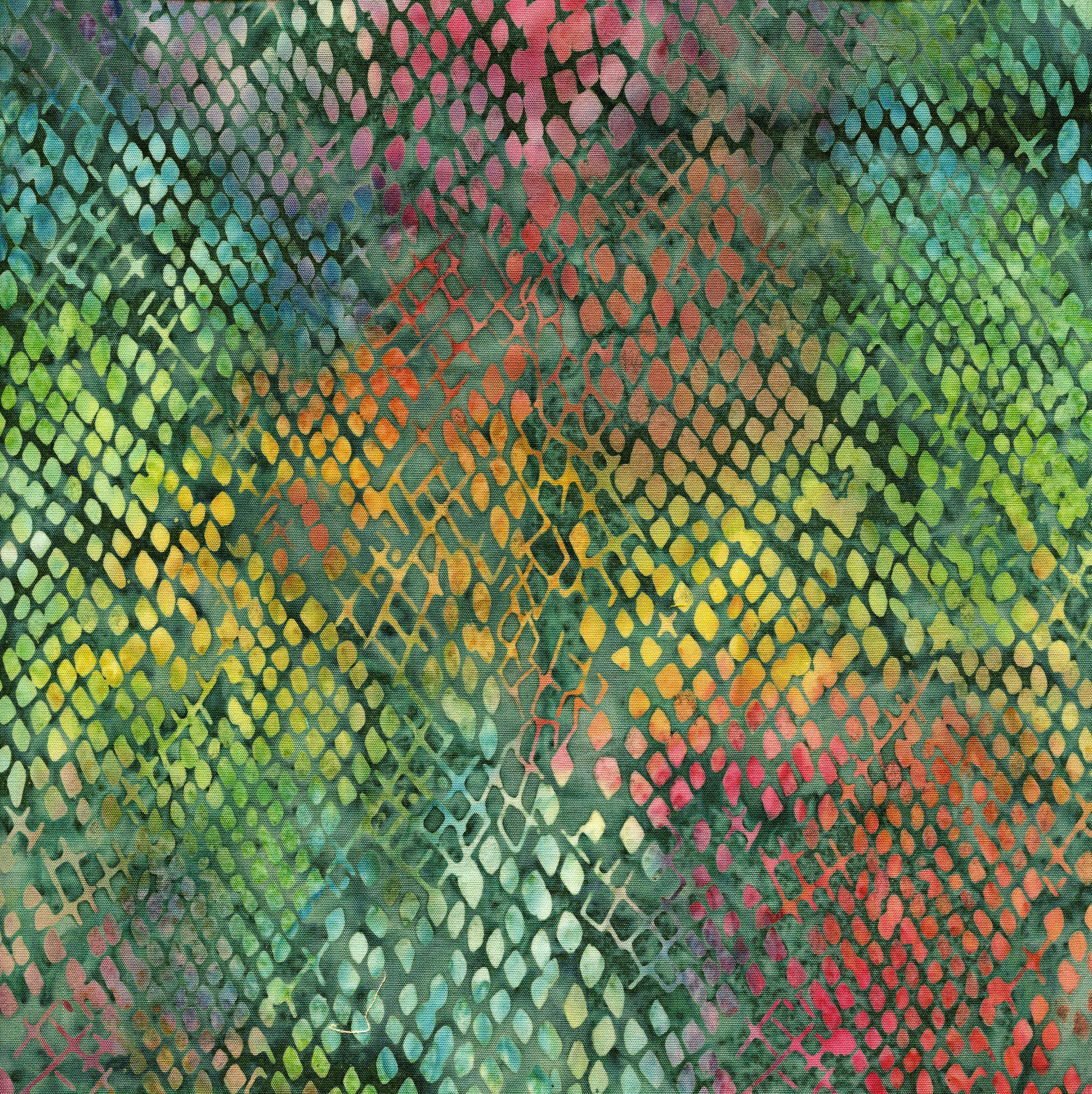 111805561 / Snake Skin-Teal