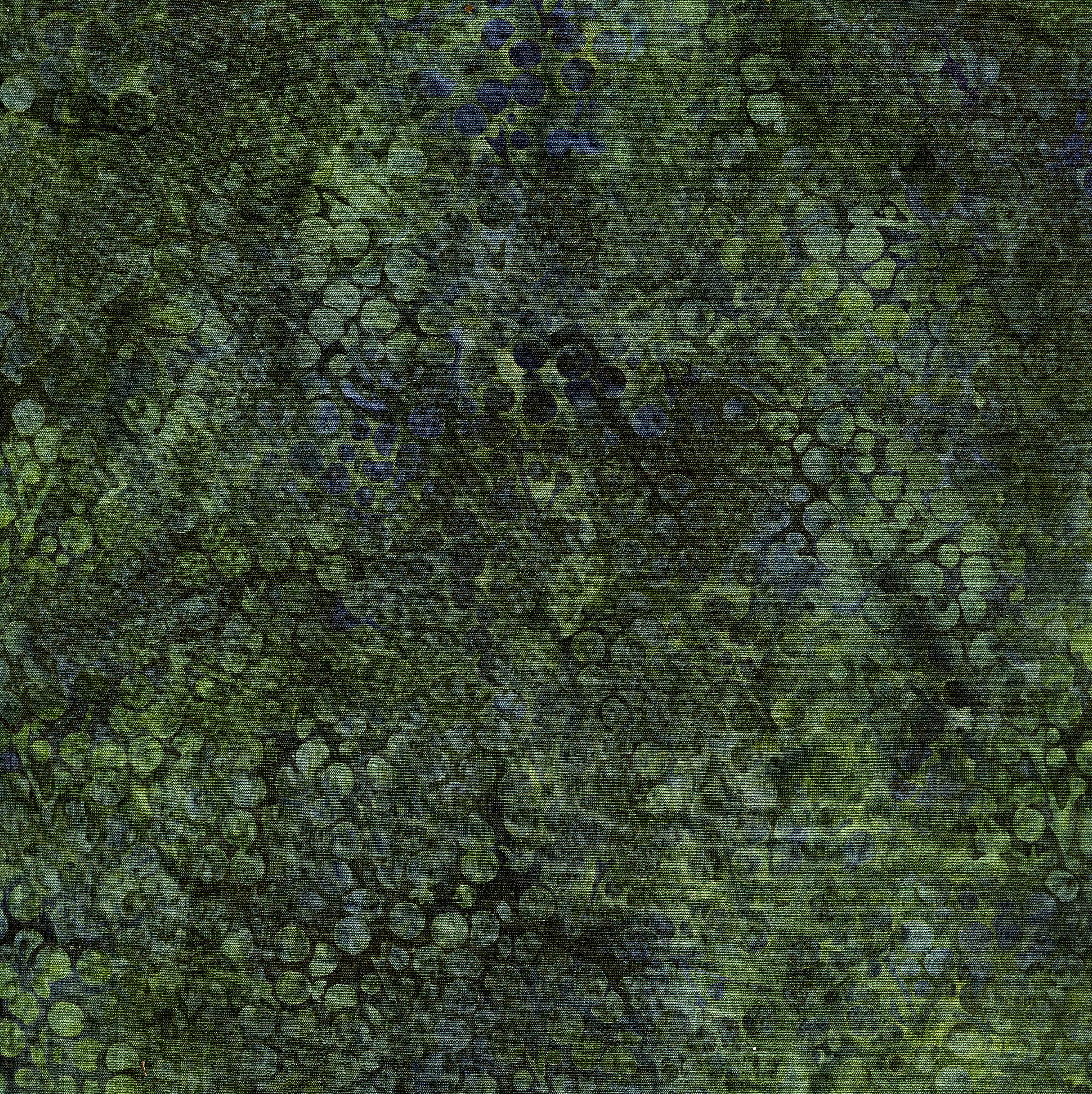 111816685 Berries-Pineneedle