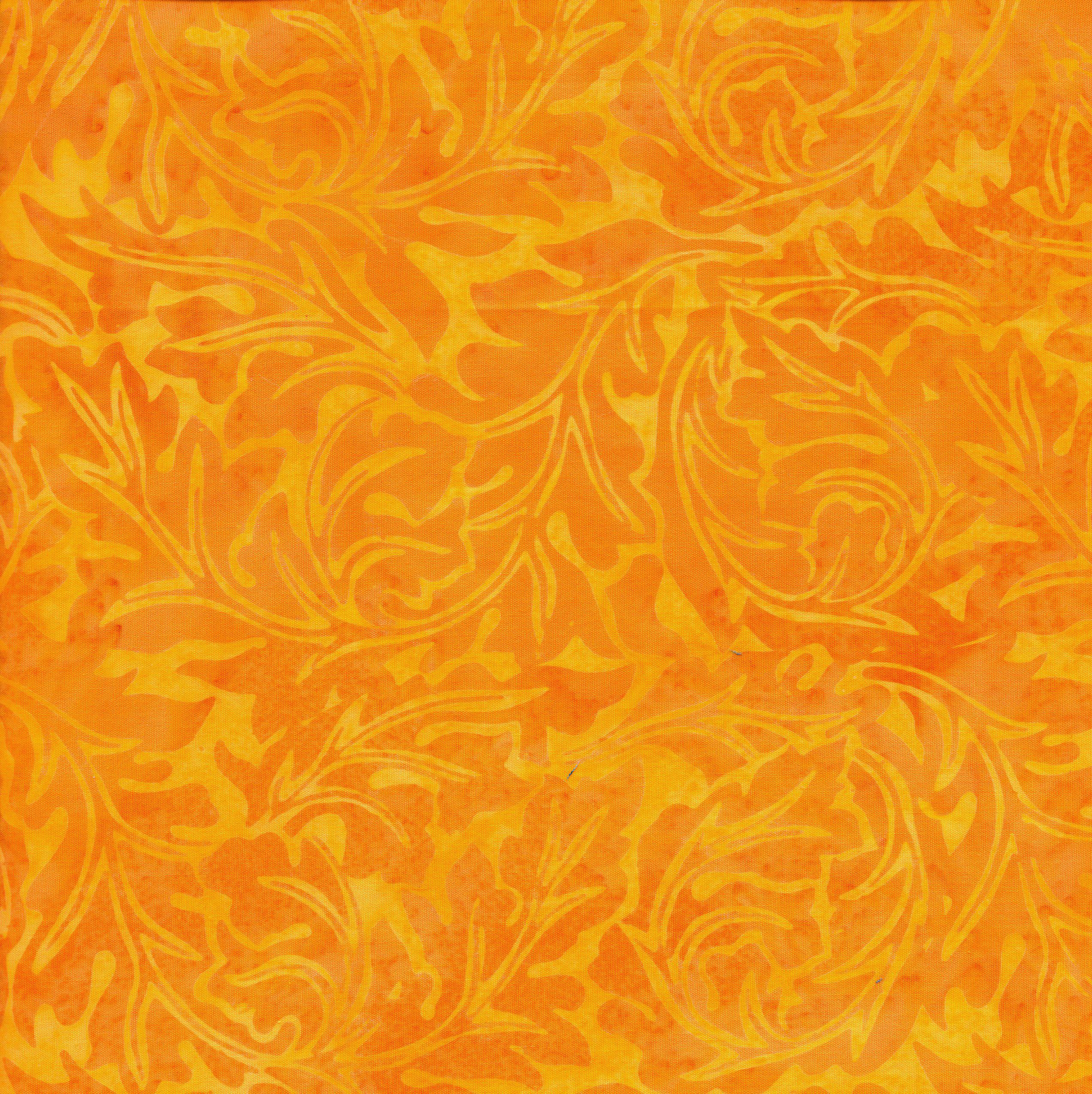 111818130 / Acathus -Sunshine