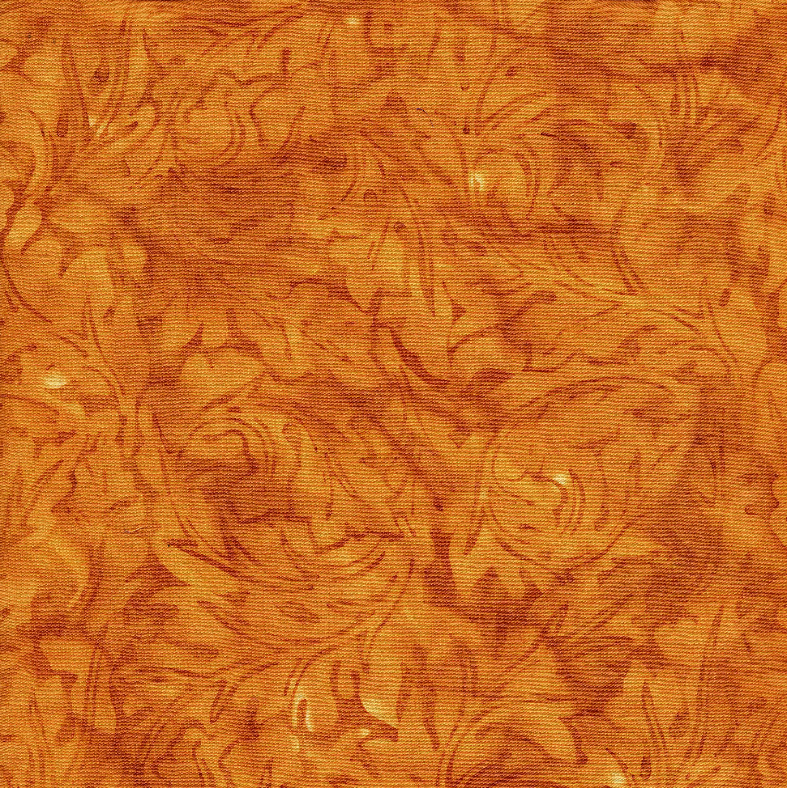 111818885 / Acanthus - Gold