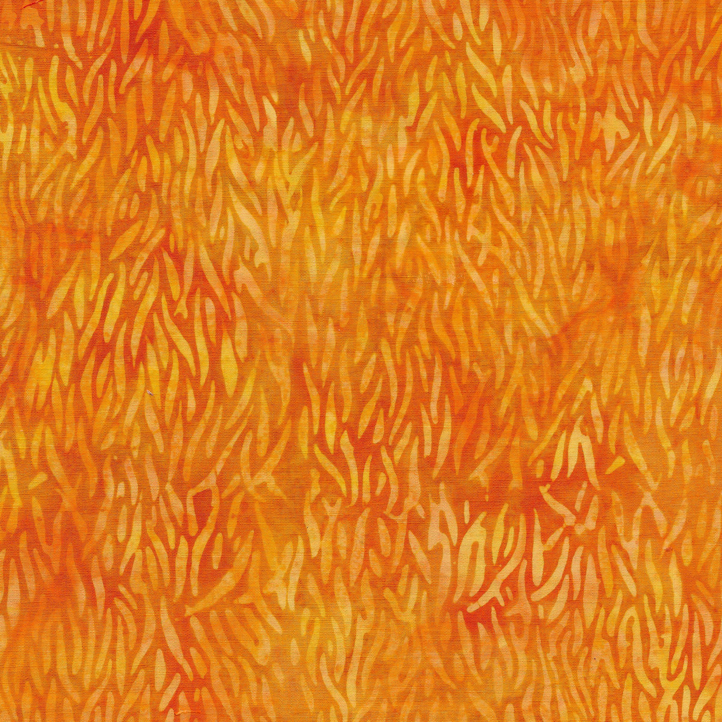 111901150 / Kelp-Cheddar