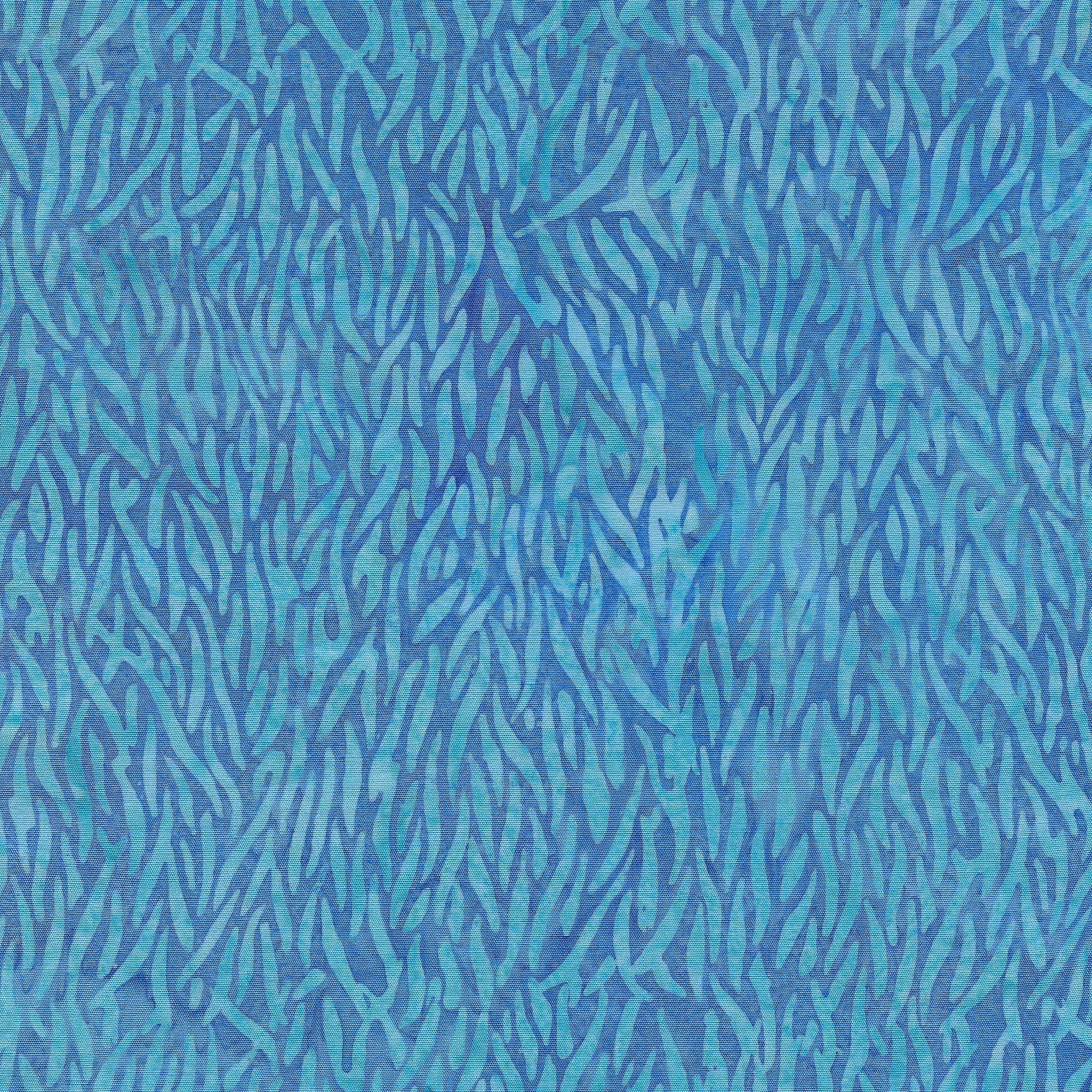 111901523 / Kelp-Surf
