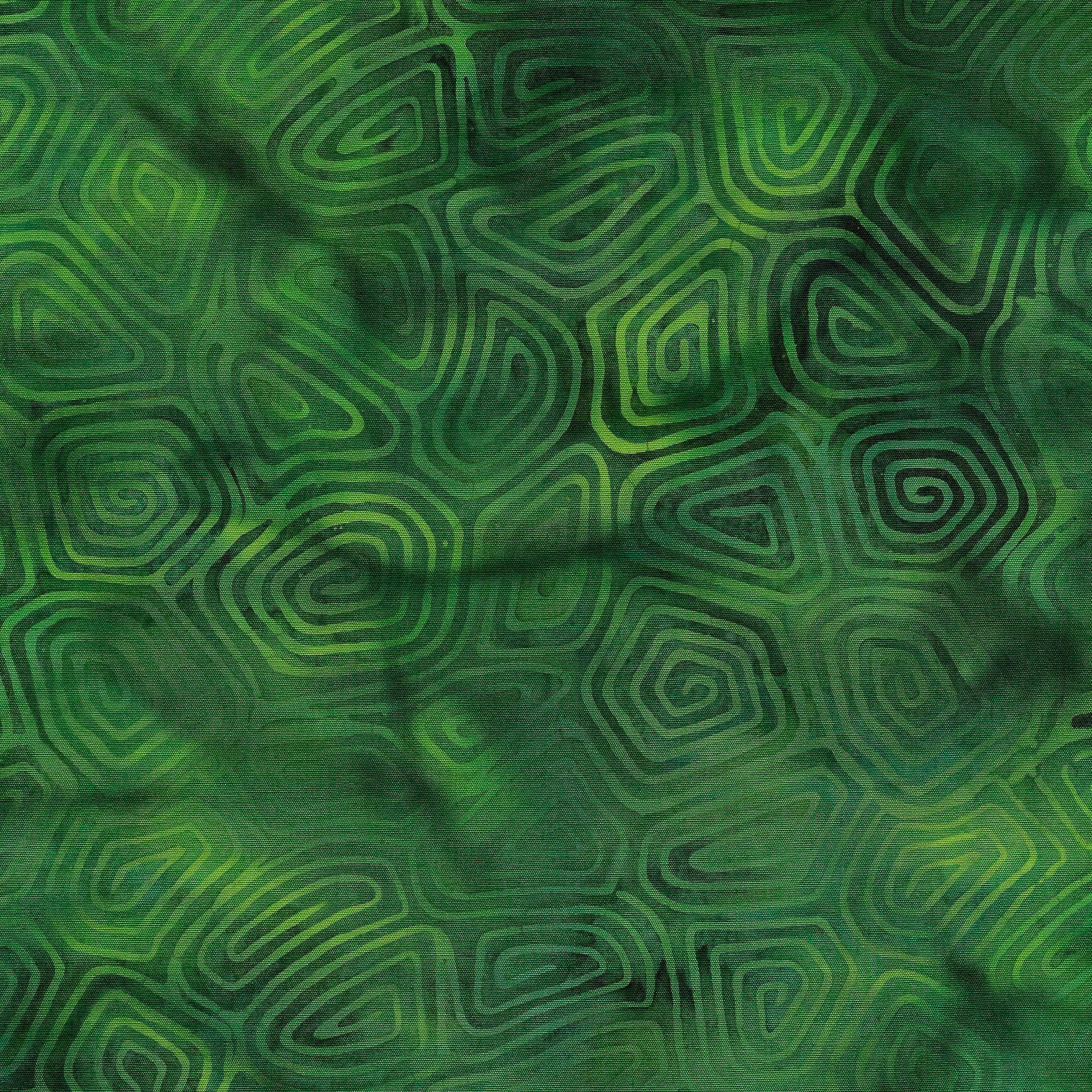 Magical Reef Fern Turtle Shell 111902677