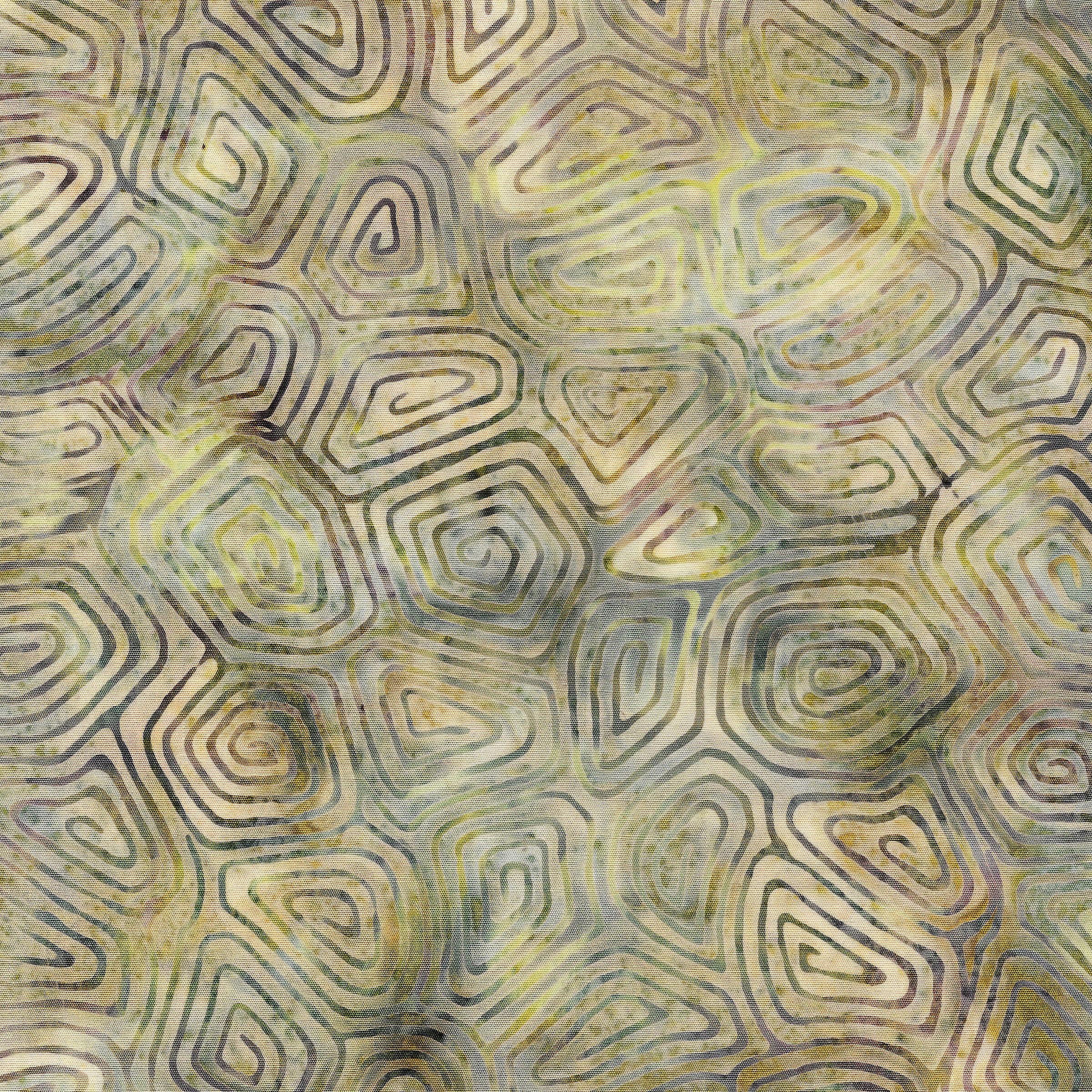 111902805 / Turtle Shell-Pond Moss