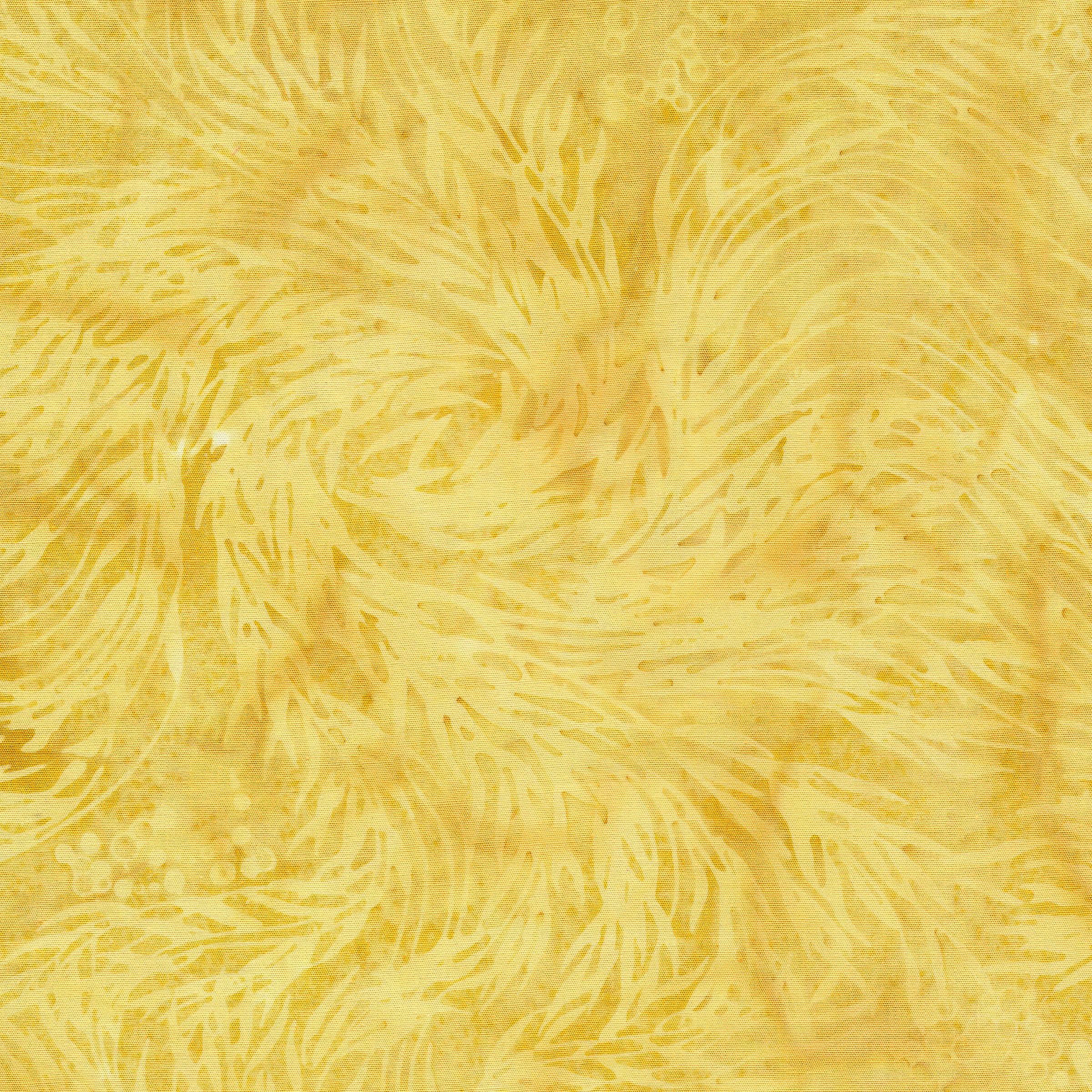 111913038 / Swirl Kelp-Hay