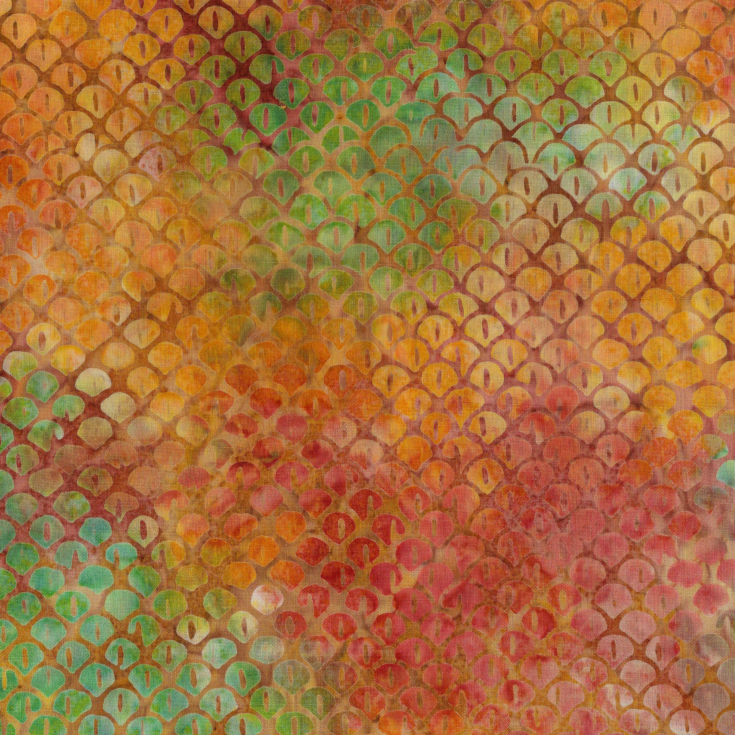 111914875 / Scales-Rainbow