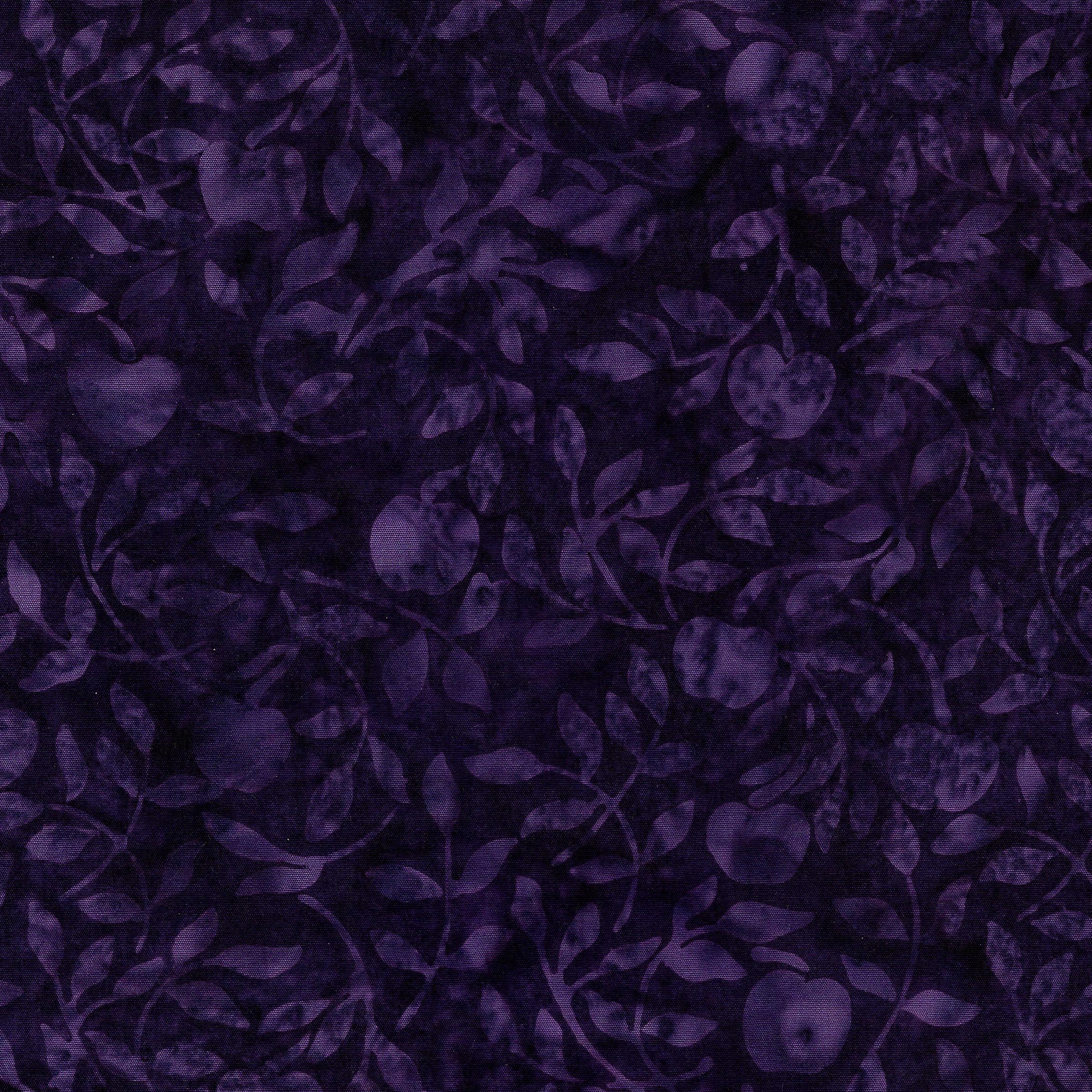 Cherries-Blackberry 111925485