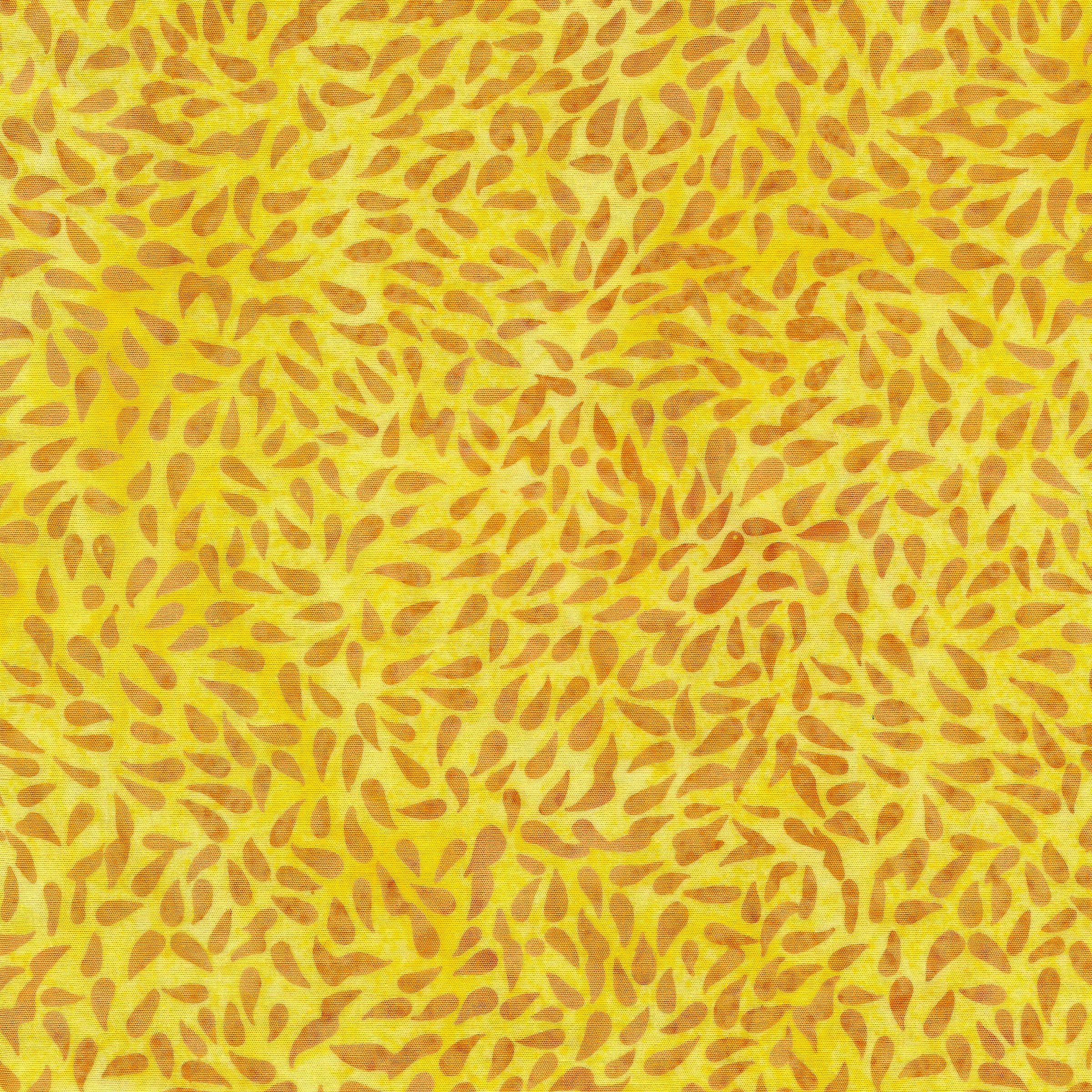 111928120 / Tossed Seeds -Sun
