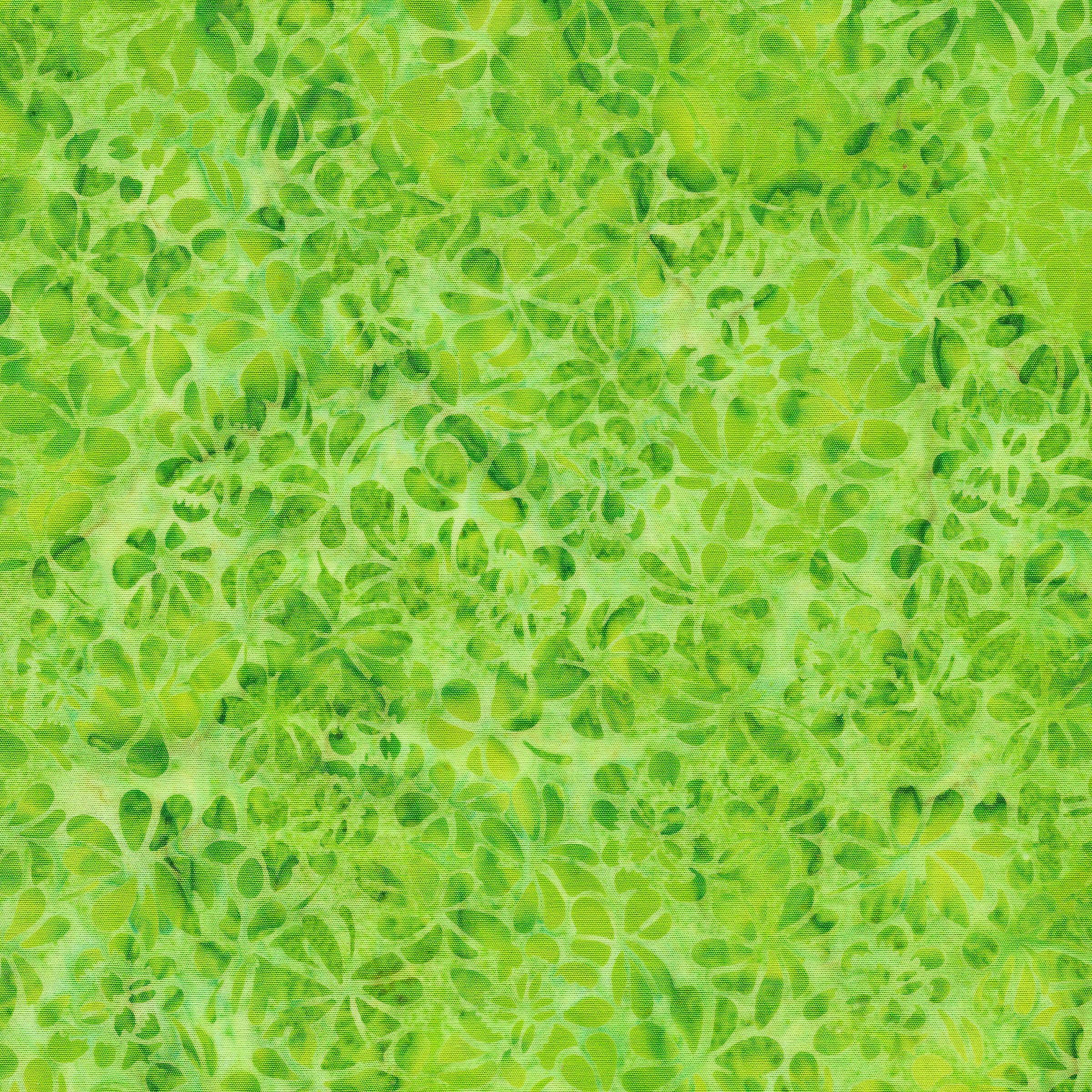 Petal Pushers Lemonlime Clover 111932612
