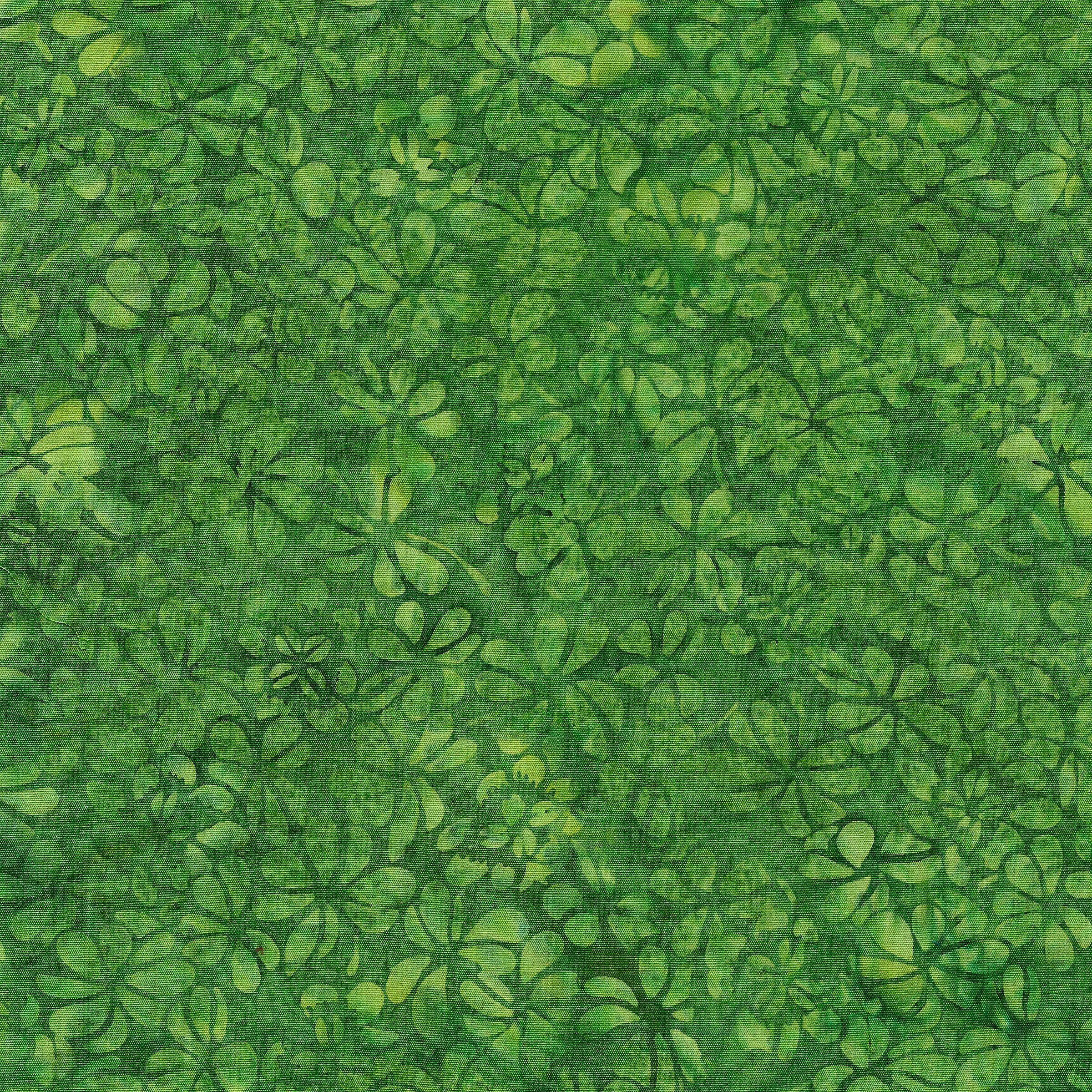 111932644 / Clover-Moss