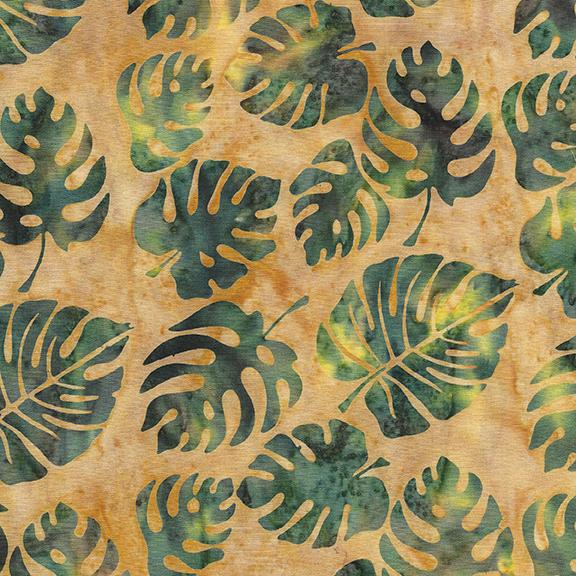 Coco Cabana: Philodendron - Smore