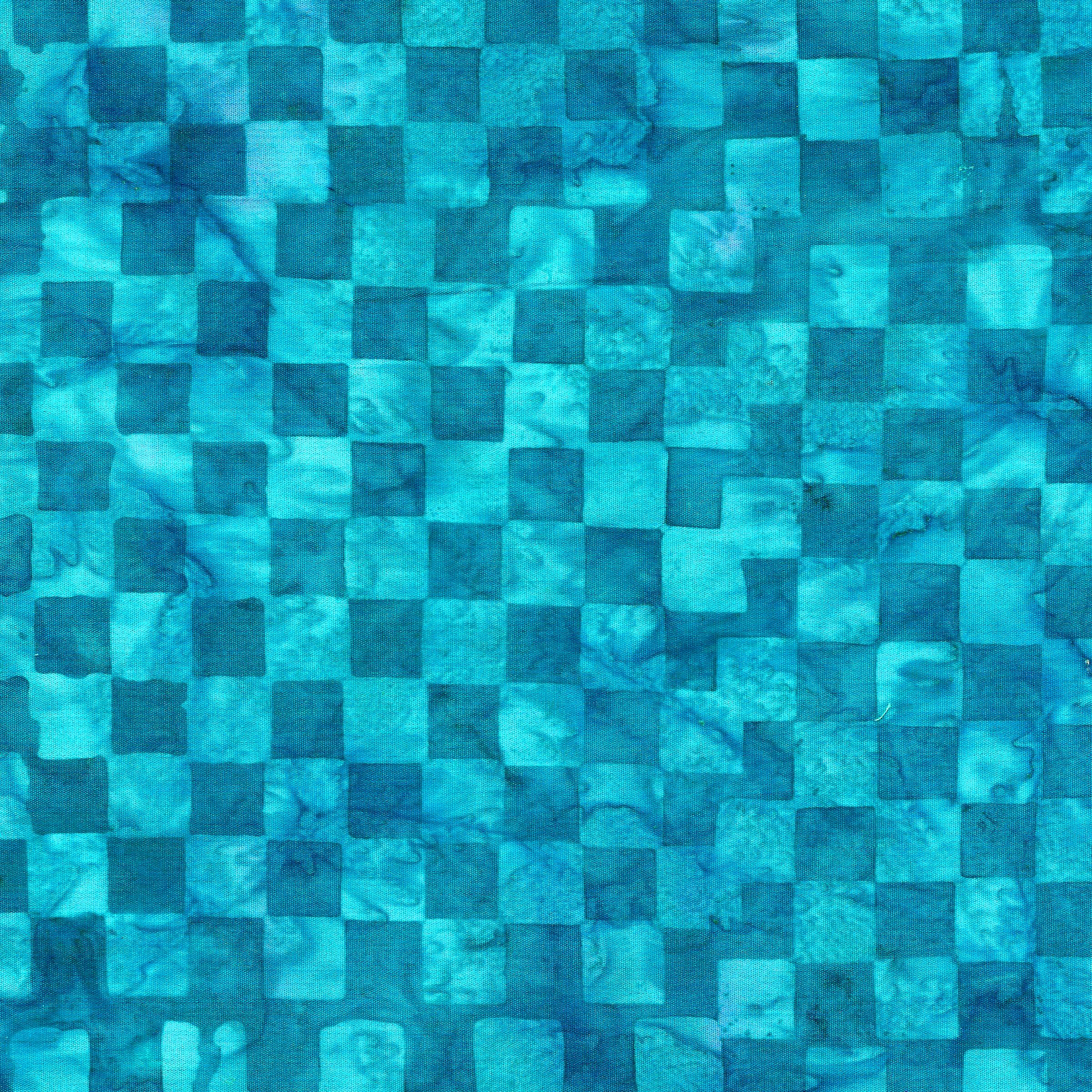 121809525 / Check -Pool