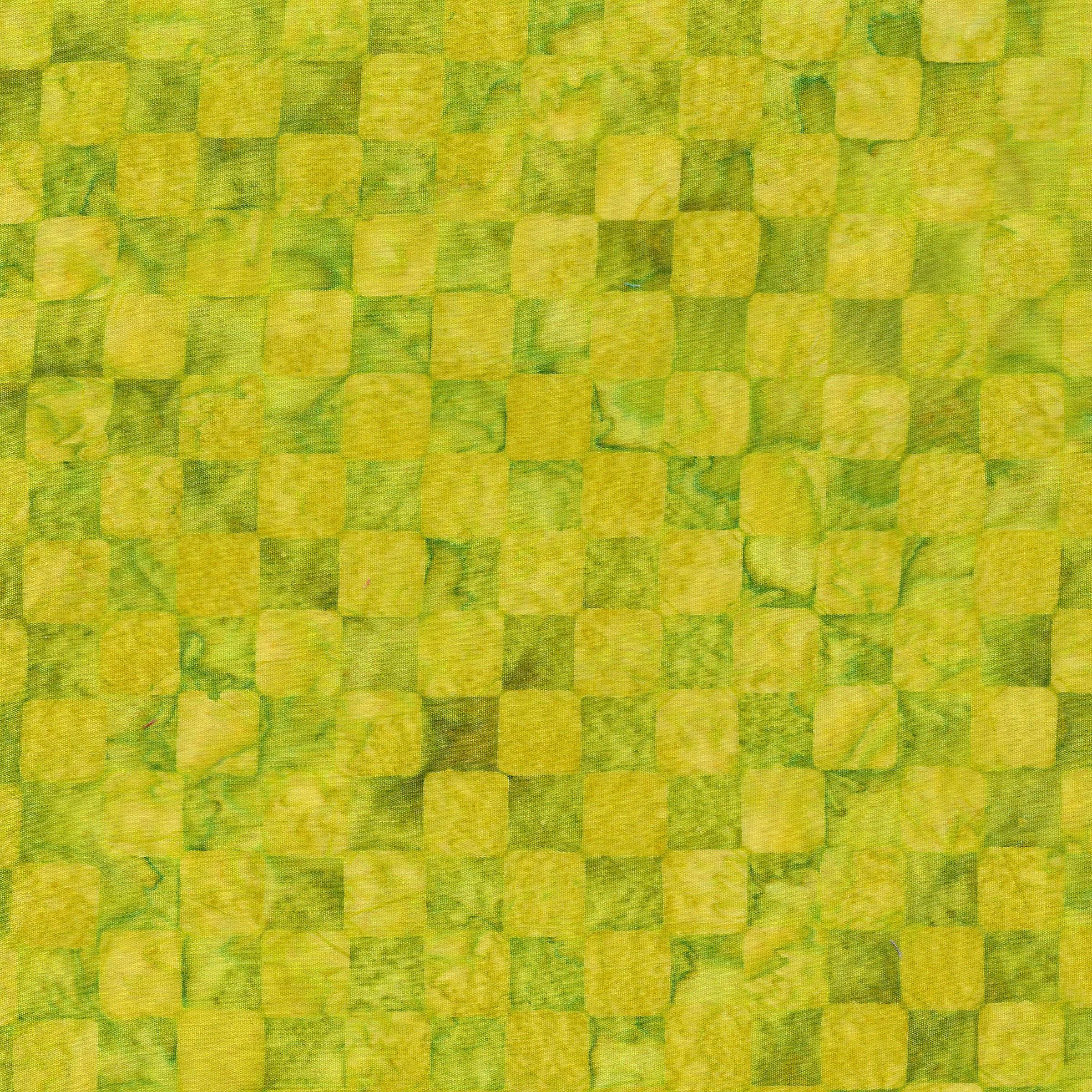 121809612 / Check -Lemon Lime