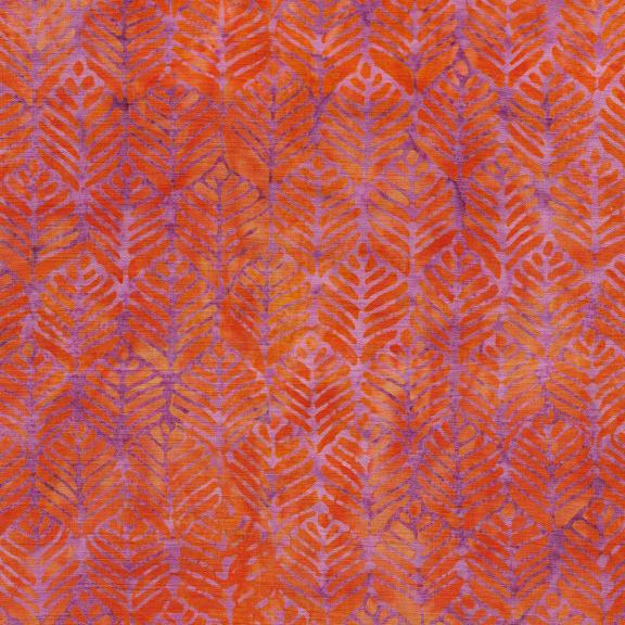 Cascadia Tangerine 521909240