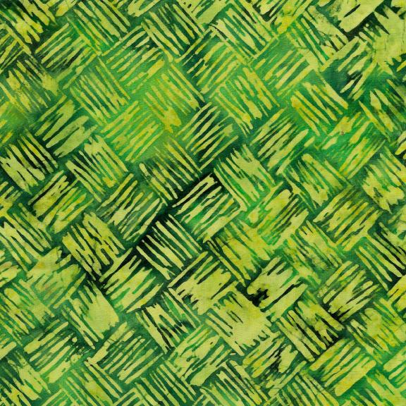 521909645 / Brush Stroke Weave -Cactus