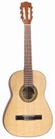J Reynolds 36 Guitar w/ Bag