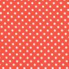 Dumb Dot - Persimmon