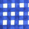 Painted Gingham DC7060-BBER-D Blue